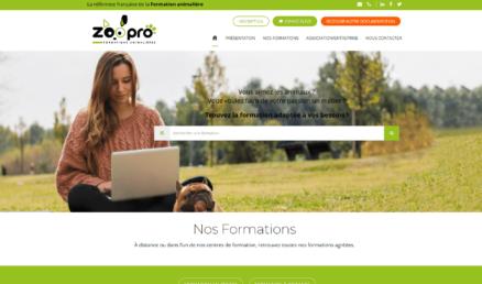 site-web-2